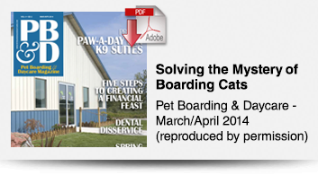 Solving the Mystery of Boarding Cats with Innovative Housing Options