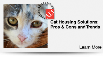 Trends in Cat Housing
