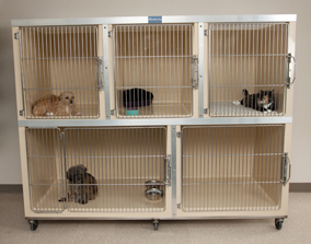 Mason Company Kennel Manufacturer Kennel Designs