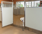 Mobile Daycare Room Dividers