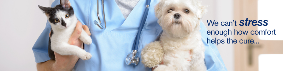 Resources for Veterinarians