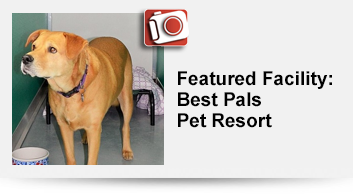 Featured Facility: Best Pals Pet Resort