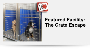 The-Crate-Escape