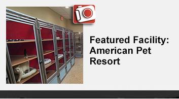 American Pet Resort