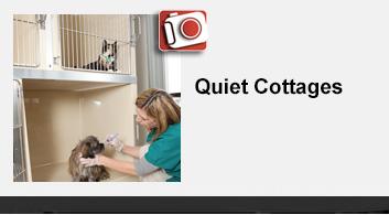 Quiet Cottages
