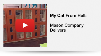 My Cat From Hell - Mason Company Delivers