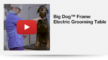 Big Dog™ Frame Electric Grooming Table